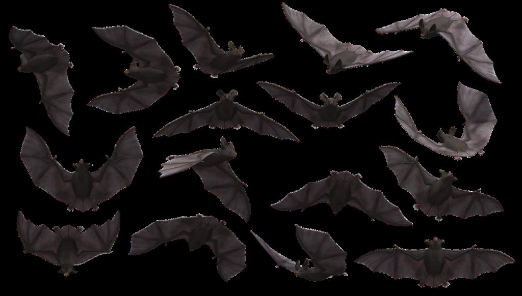עטלפים